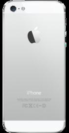 Apple iPhone 5 32GB White back